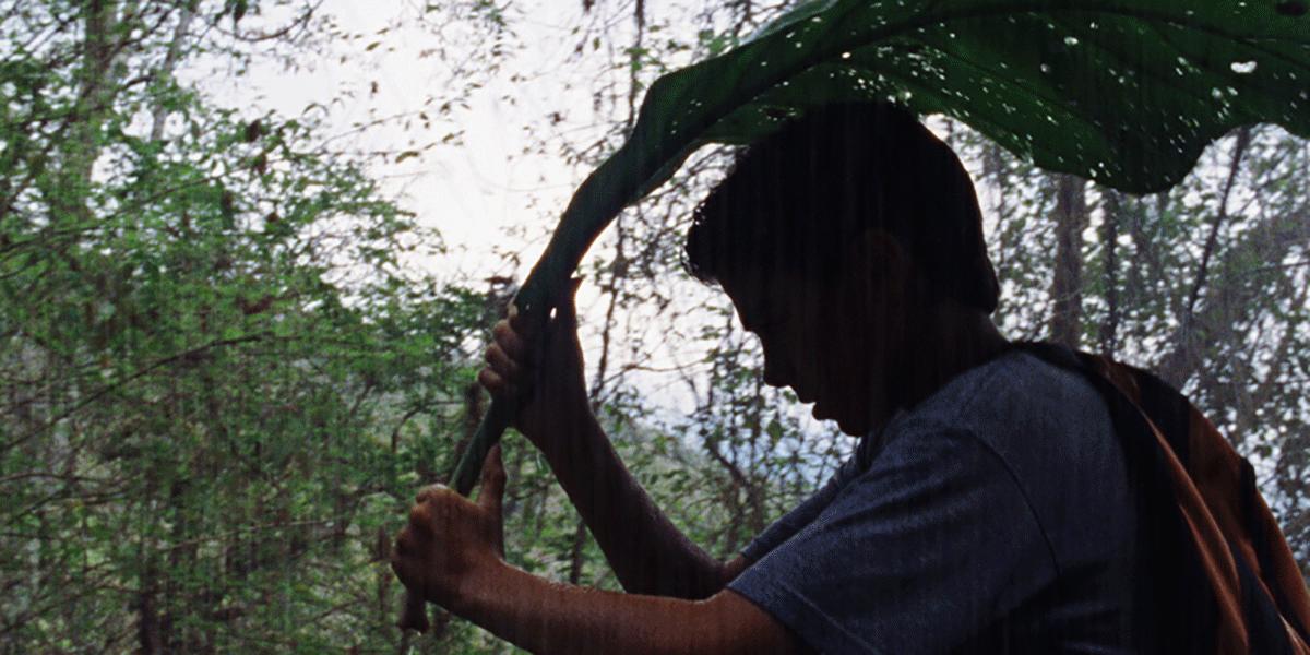 kidwholies_latin film